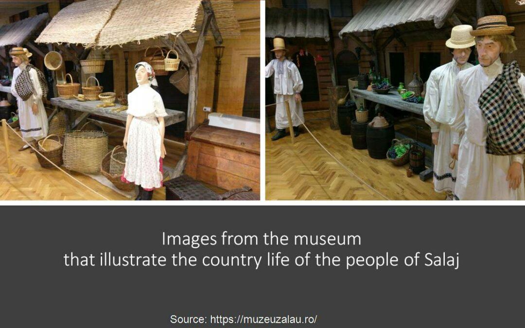 Virtual visit to the Sălaj County Museum of History in Zalău